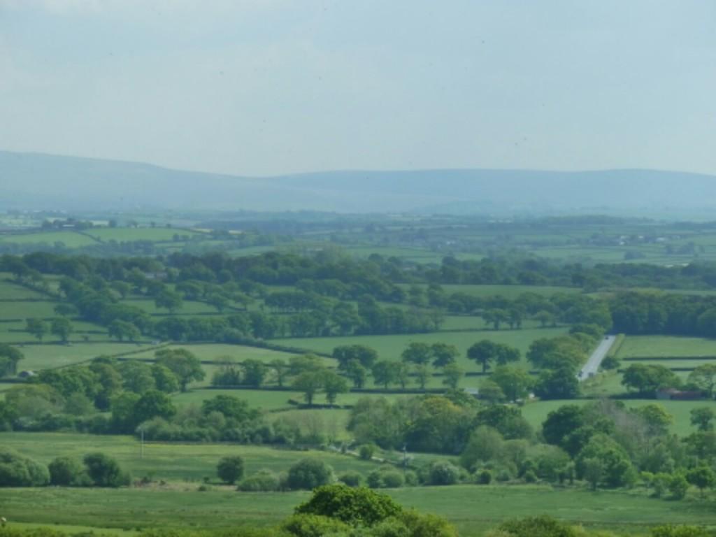 Looking  towards Dartmoor