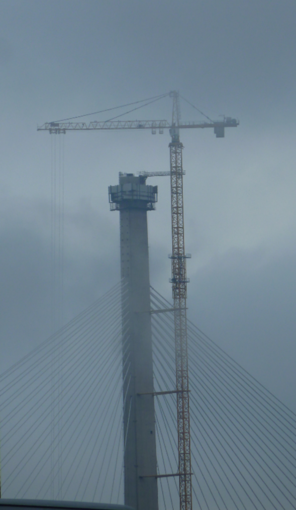 Cranes disappearing into the mist