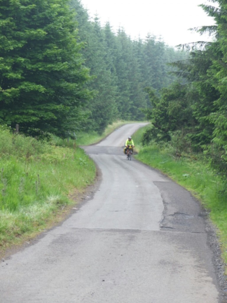 Lane through forest south of Kinross