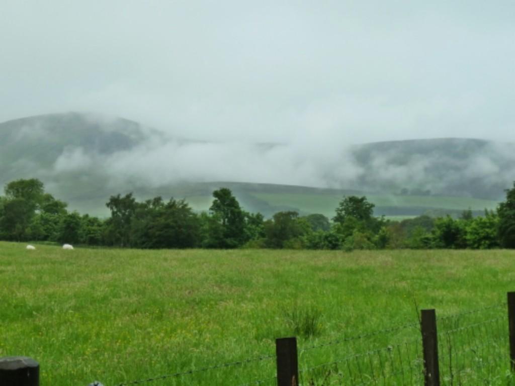 Misty hills